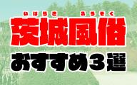 茨城の風俗おすすめ人気ランキング3選【2020年8月最新】
