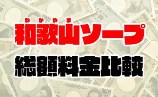 和歌山ソープの総額 | 1番安い激安店から高級店まで料金を徹底比較【2020年8月最新】