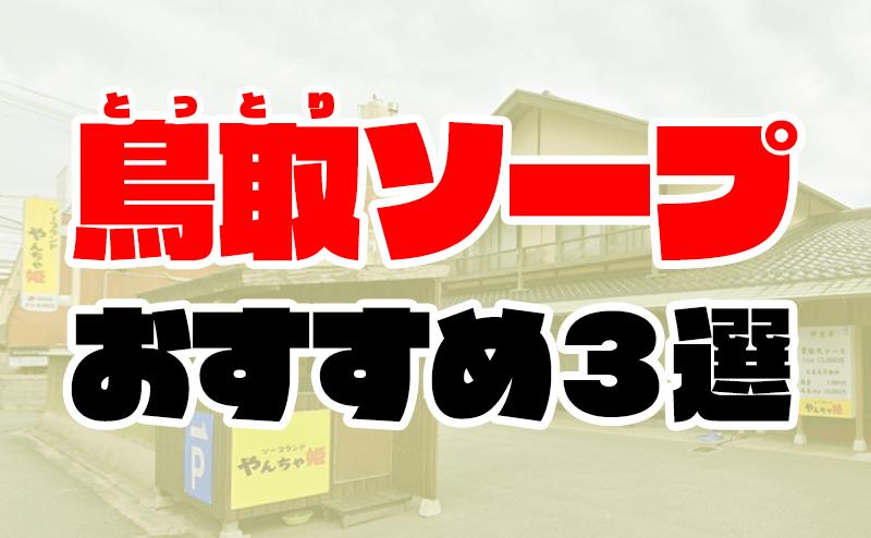 【米子】鳥取のソープおすすめ人気ランキング3選【皆生温泉】