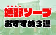 【佐賀】嬉野ソープおすすめ人気ランキング3選【2020年11月最新】